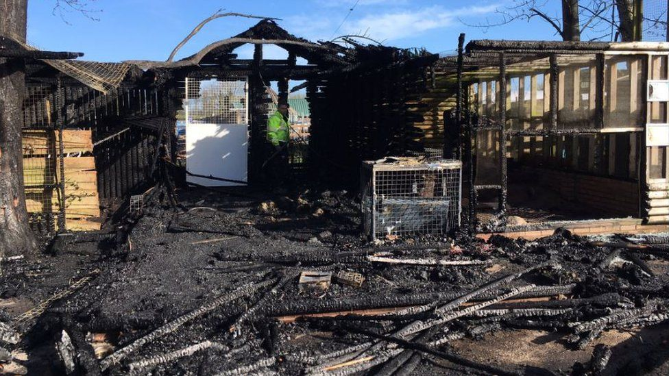 Firefighters hose down burnt enclosure