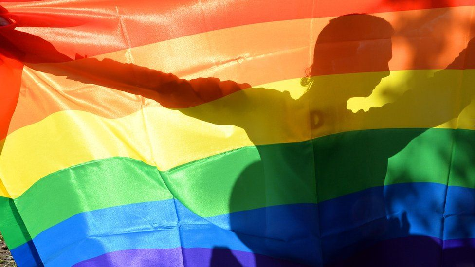 A rainbow flag during a Gay Parade in Kiev on May 25, 2013