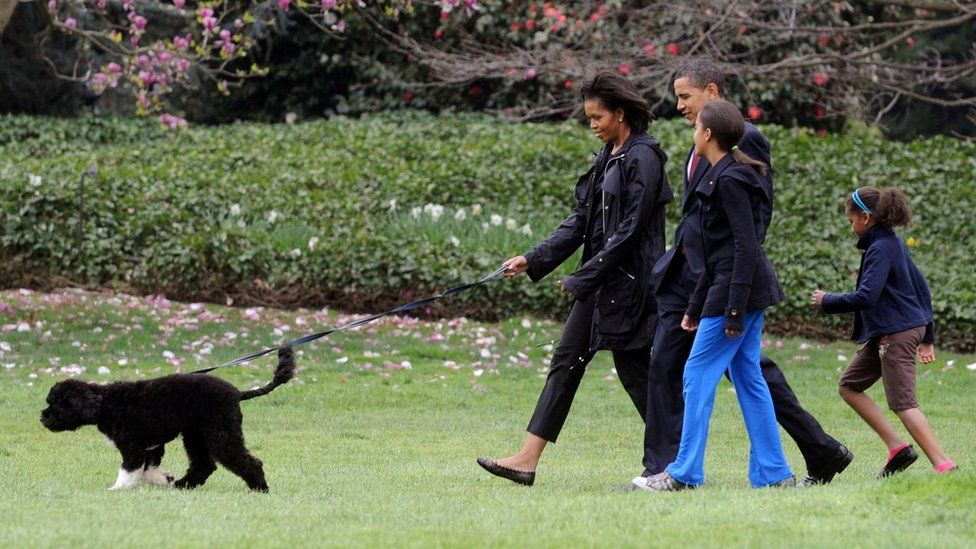 US President Barack Obama, First Lady Michelle Obama and their two daughters Sasha and Malia walk the new White House dog Bo in April 2009