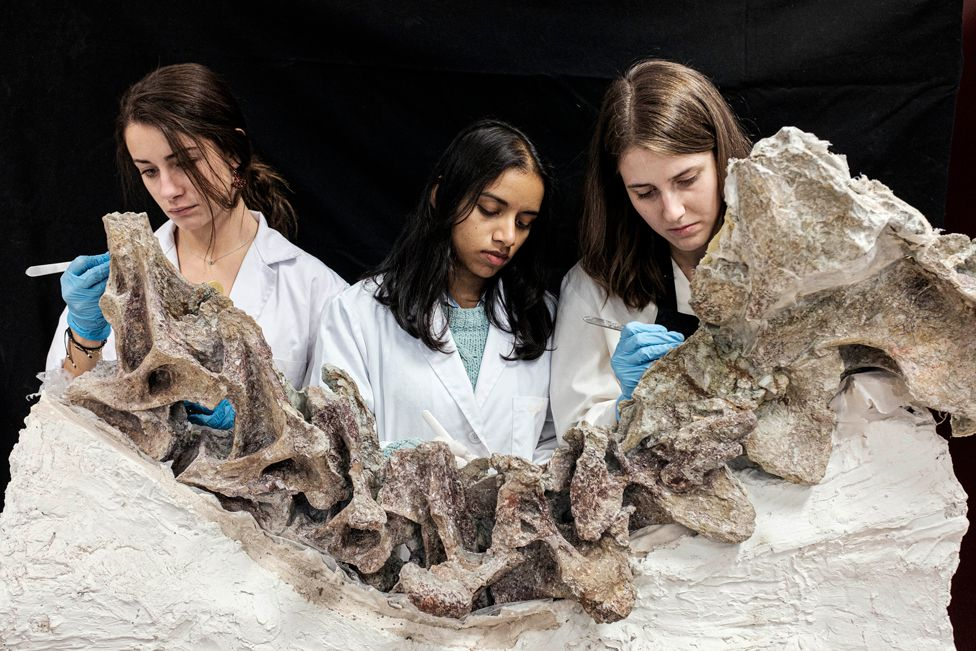 Three people working on a fossil