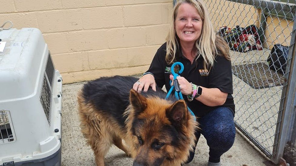 Lorraine Edwards with a rescued dog.