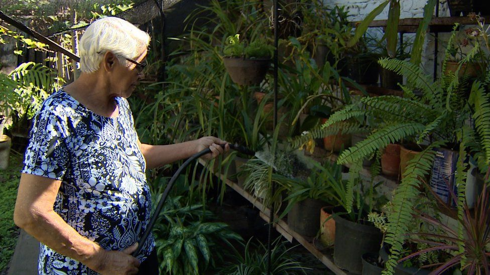 Cilta Maria watering her orchids