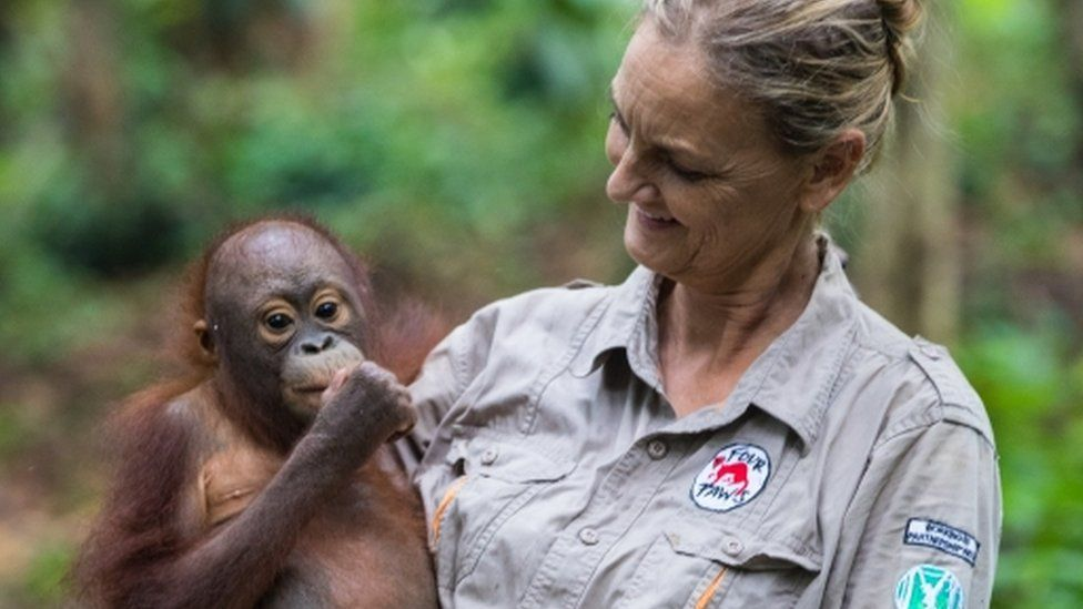 Dr Preuschoft and orangutan