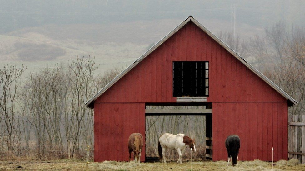 Three horses are shown standing outside of a open-door red barn.