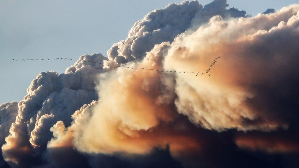 A cloud of smoke formed by a wildfire in Canada