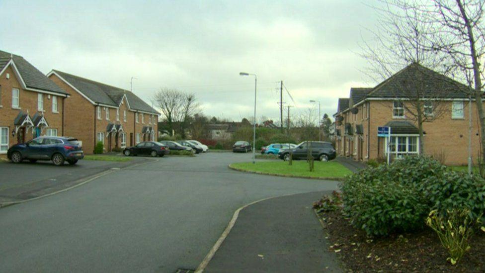 Mornington Gardens, Lisburn, where a woman was pronounced dead on Christmas Day