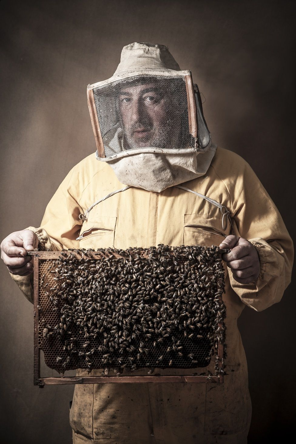 A portrait of a beekeeper holding honeycomb with bees