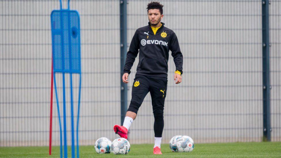 Sancho in training