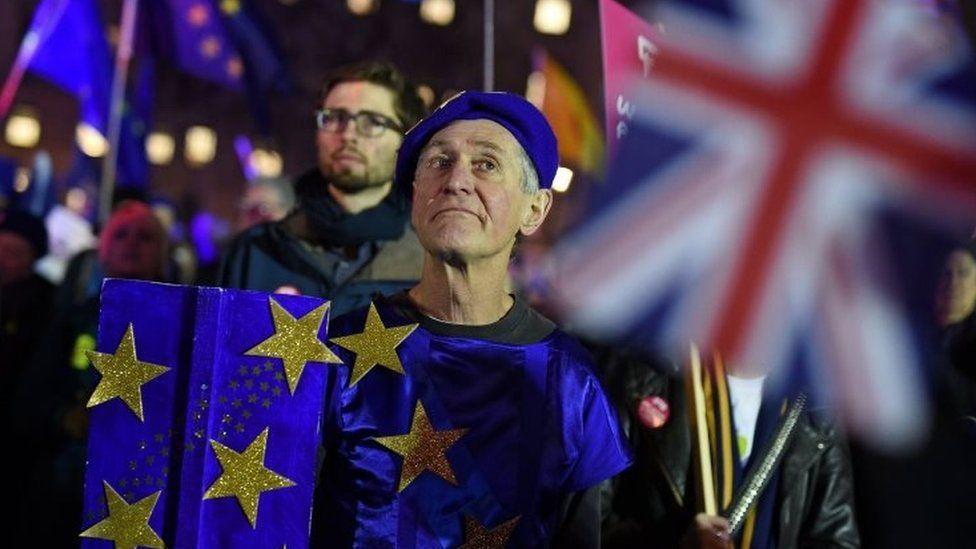 Anti- Brexit protester