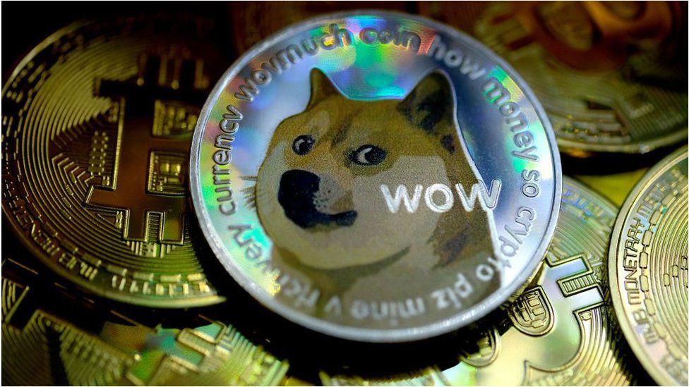 Dog coins vs bitcoins price chalet suisse restaurant kleinbettingen