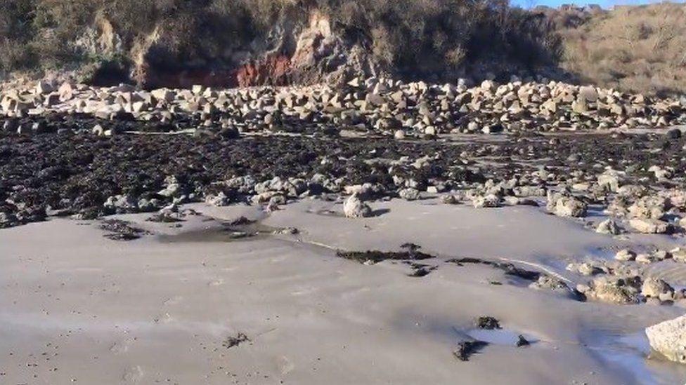 Folkestone beach where migrants were found