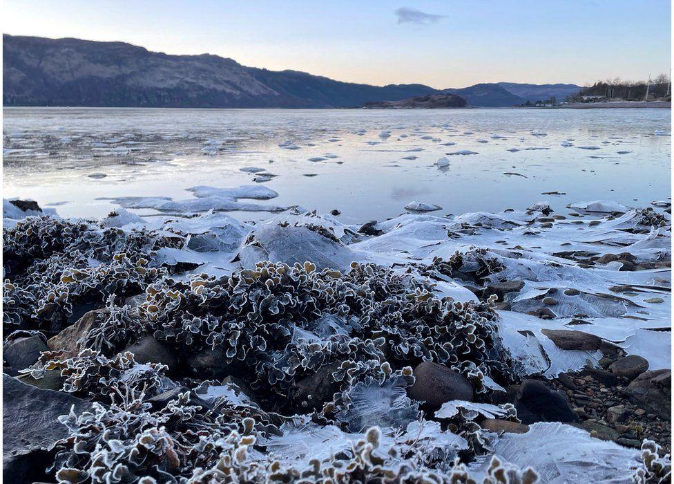Shores of Loch Carron