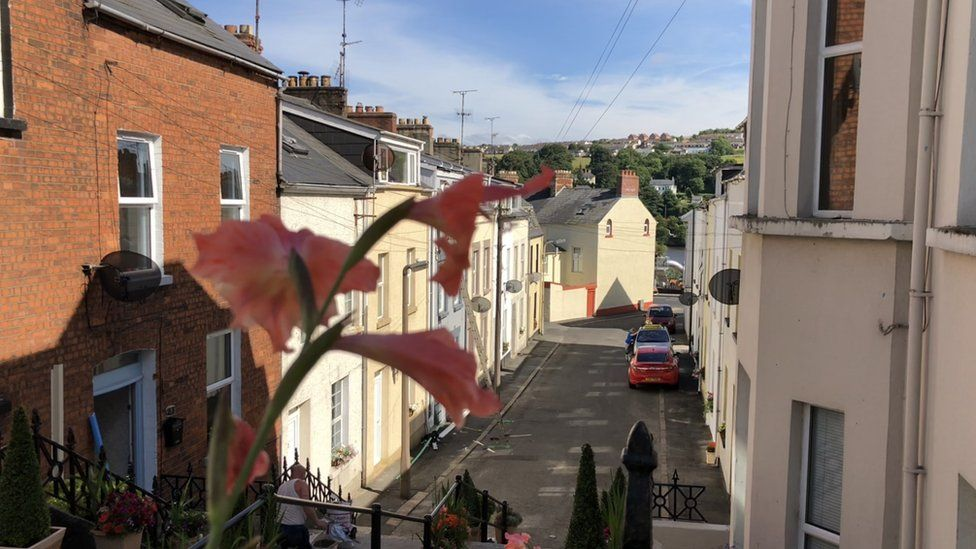 Flower in foreground of Abercorn Terrace.