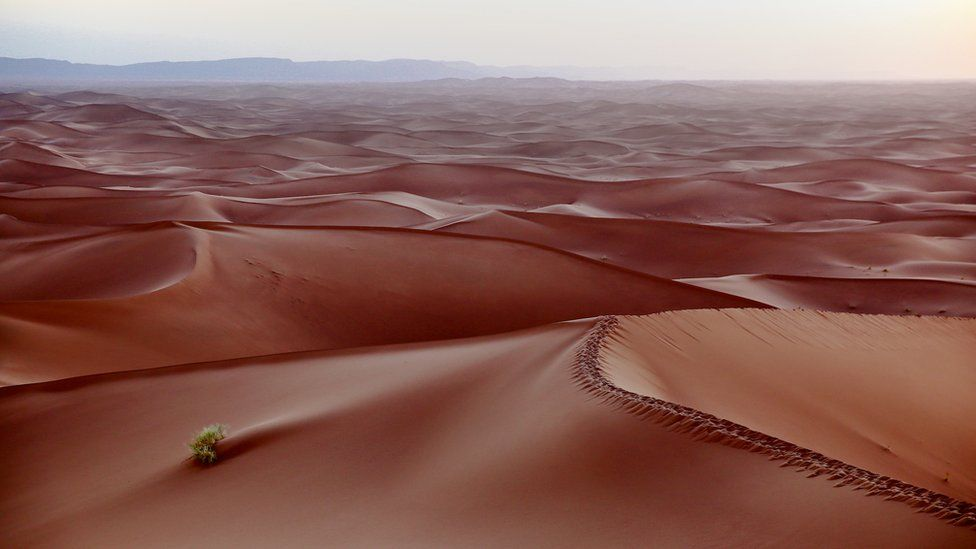 Anialwch y Sahara, Moroco fin nos yn ystod taith gerdded Ymchwil Canser Cymru