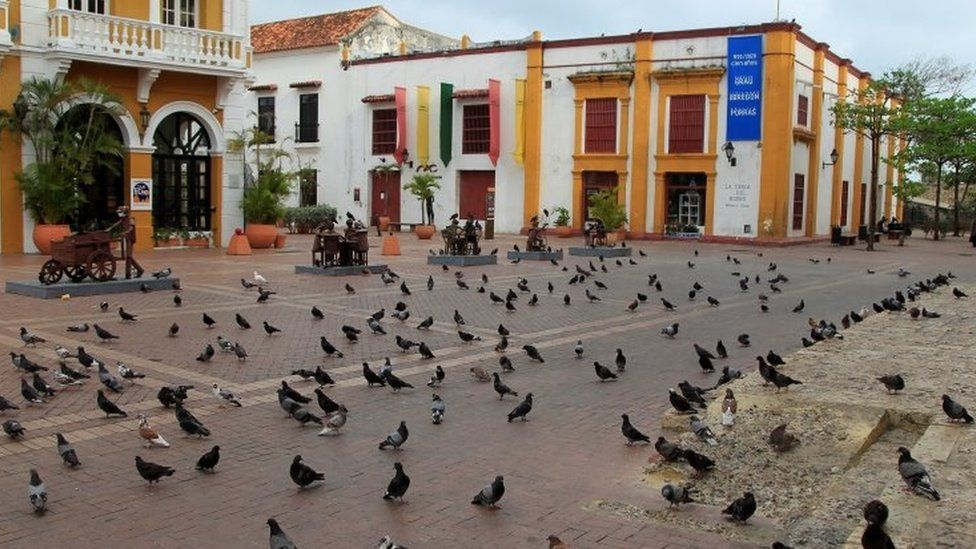 Pigeons swarm an empty St. Peter's Square in Cartagena, Colombia, 02 May 2021.