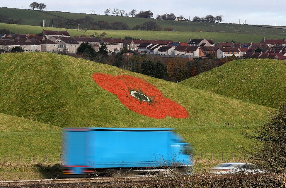Giant poppies painted on the side of the Bathgate Pyramids next to the M8