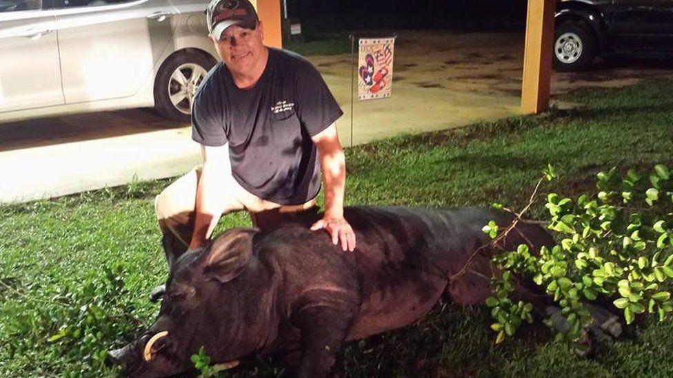 Mr Seago with the dead wild boar (July 2017)