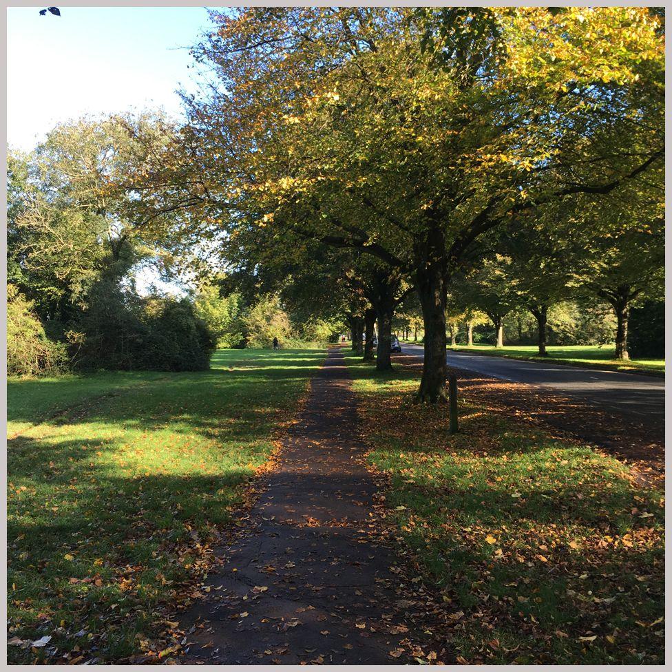 Autumnal Bristol