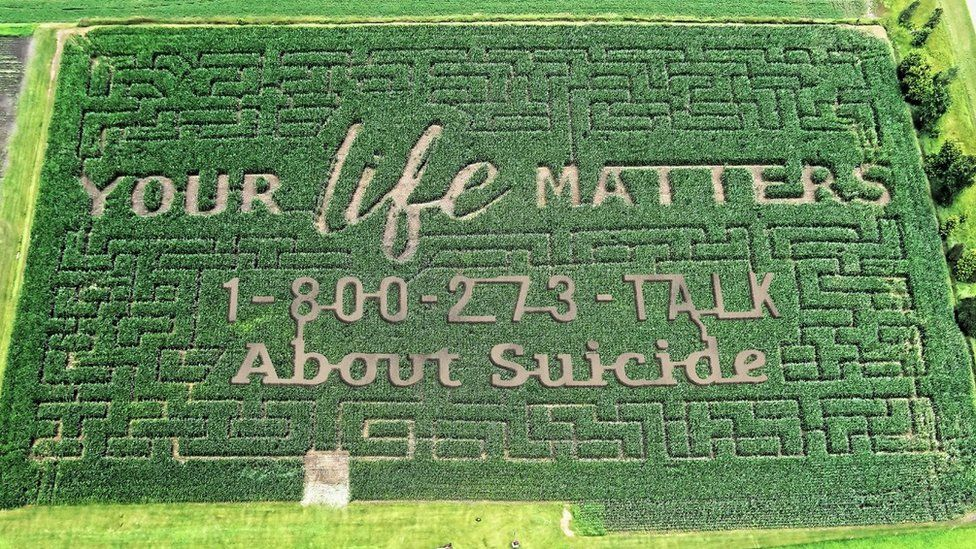 """A corn maze with the words """"your life matters, talk about suicide"""" grown into the design"""