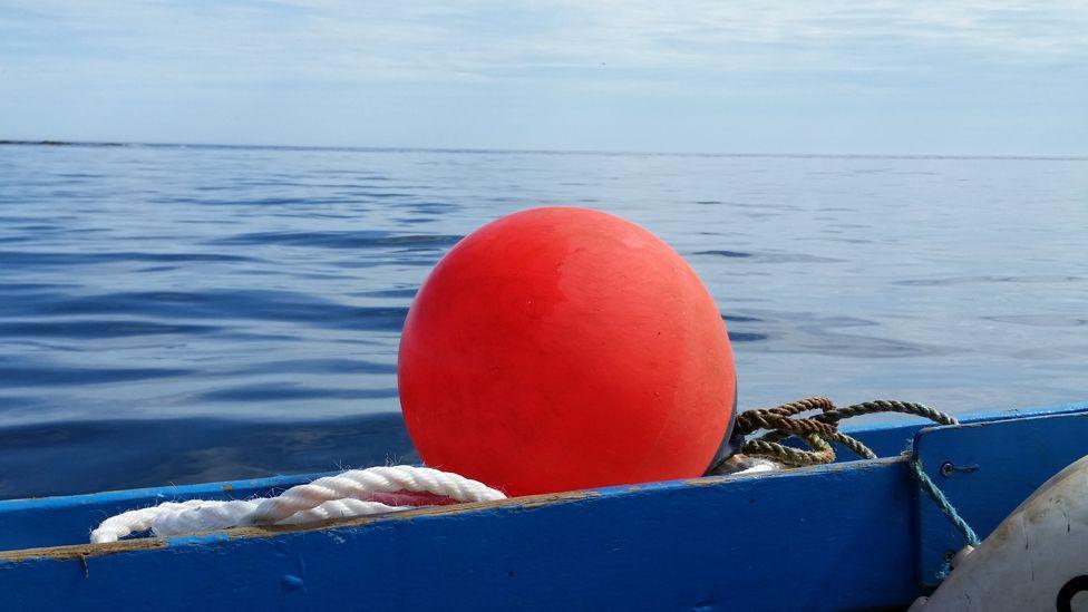Fishing buoy