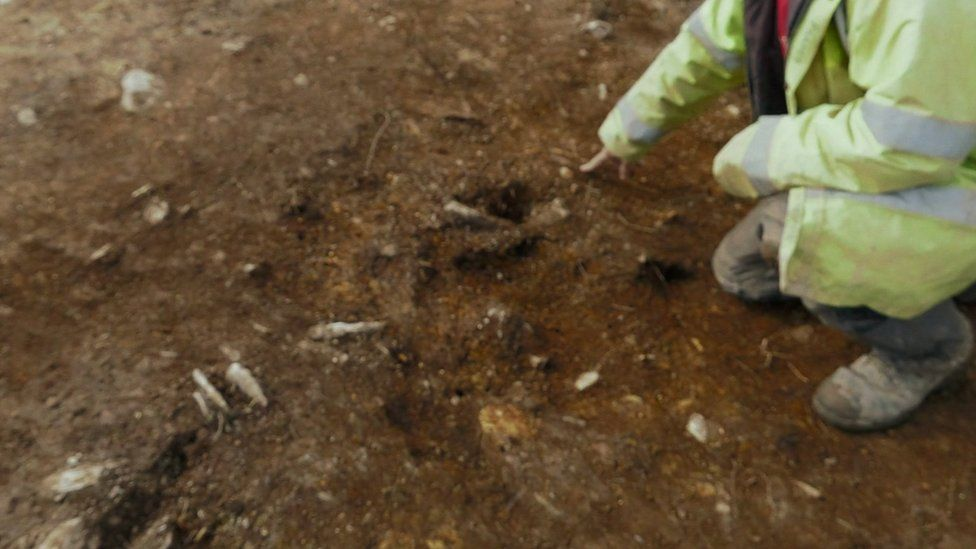 """One of the """"stone holes"""" found at Waun Mawn"""