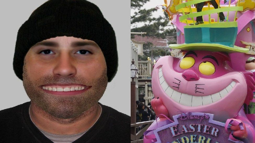 The e-fit and the Cheshire Cat