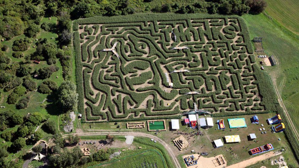 One of Adrian Fisher's cornfield mazes