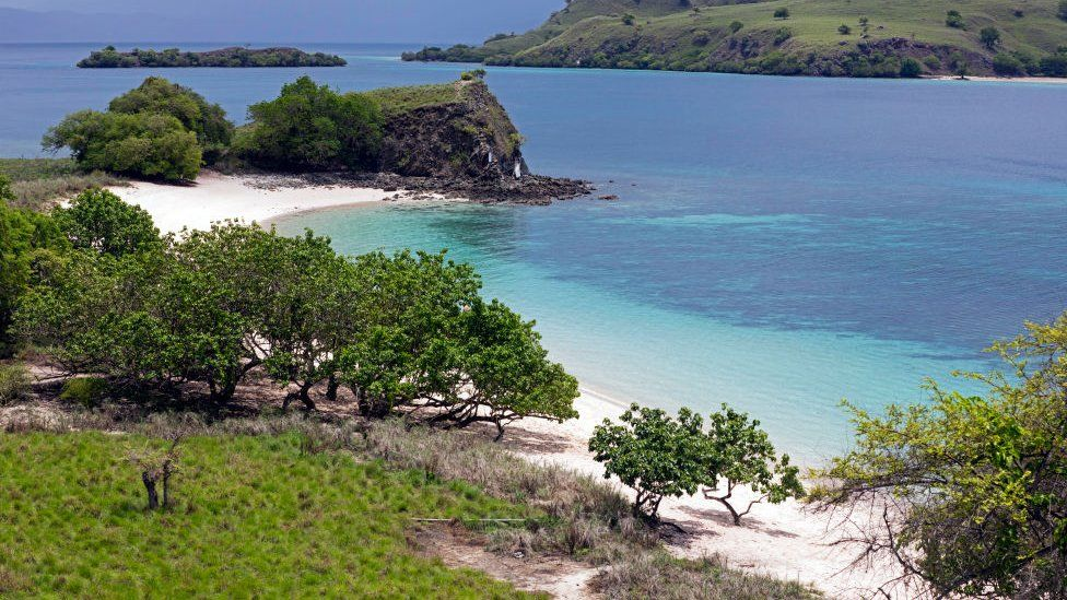 Around 2,000 people live on Komodo island, which is in eastern Indonesia