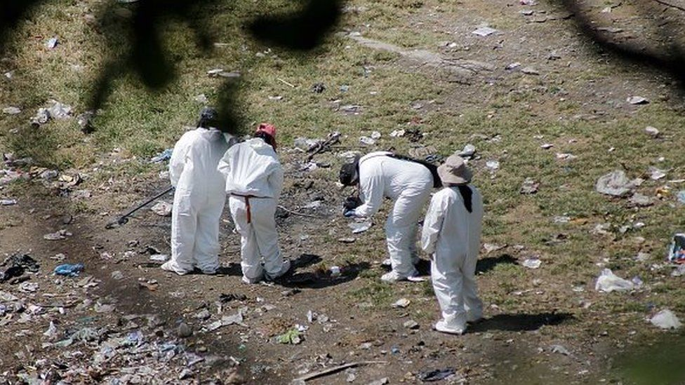 Forensic examiners search for human remains on a garbage-strewn hillside in the densely forested mountains on the outskirts of Cocula, Mexico, on 28 October, 2014