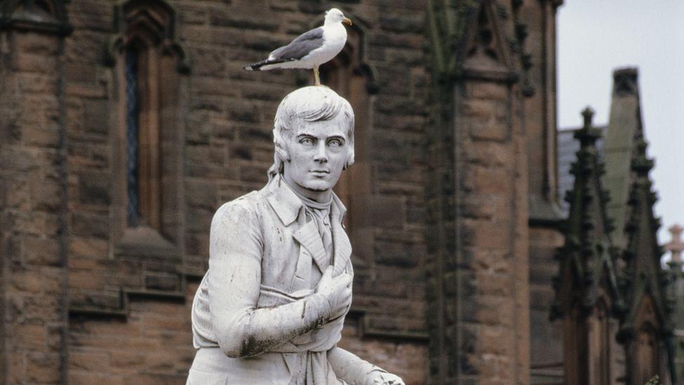 Gull on Robert Burns