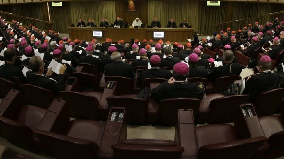 Synod on family issues (2014)