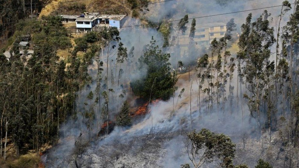 Smoke billows from a forest fire in the hillsides around Quito, on 15 September, 2015.