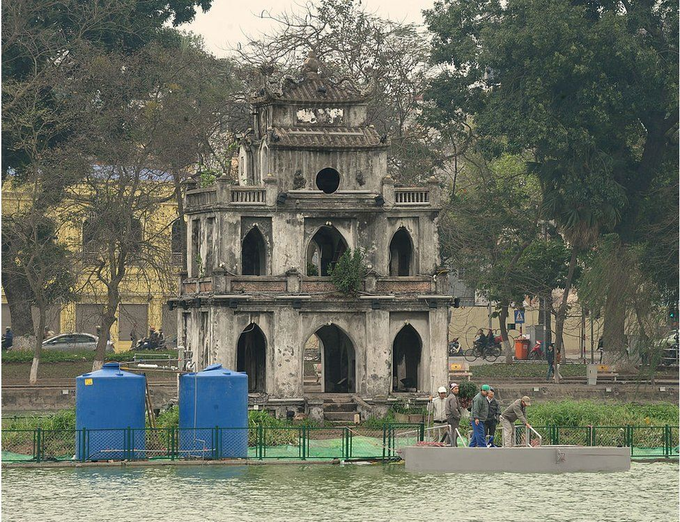 Conservationists install equipment at a small temple on the Hoan Kiem lake in the centre of Hanoi on 7 March 2011.