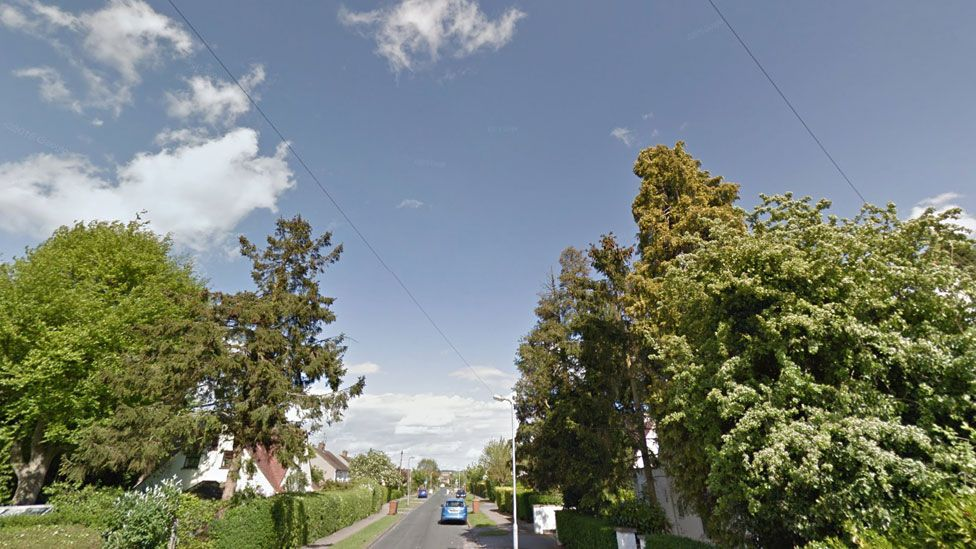 Whitehorn Lane