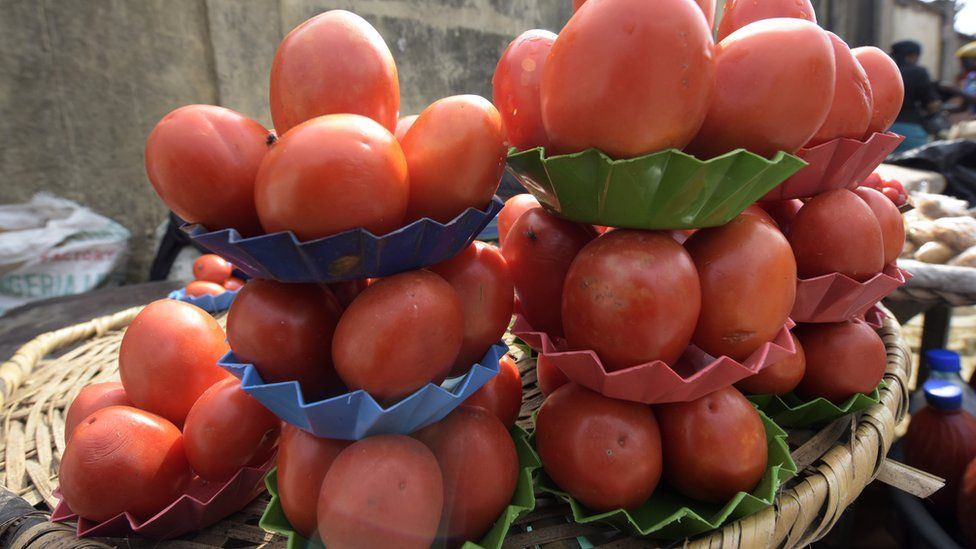 Trays of tomatoes in the market