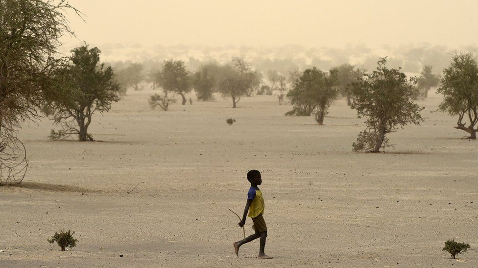 A young boy walks on June 4, 2015, on the dry lake of Faguibine near Bintagoungou in the region of Timbuktu, northern Mali