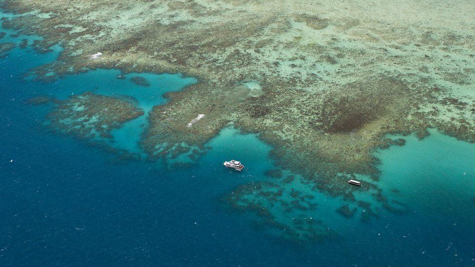 Boats beside the Great Barrier Reef