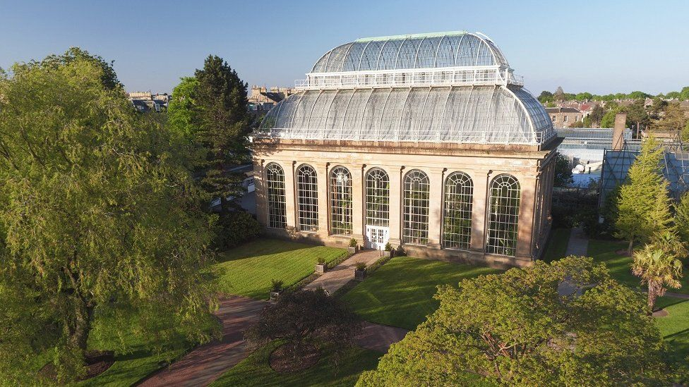 Victorian temporate palm house