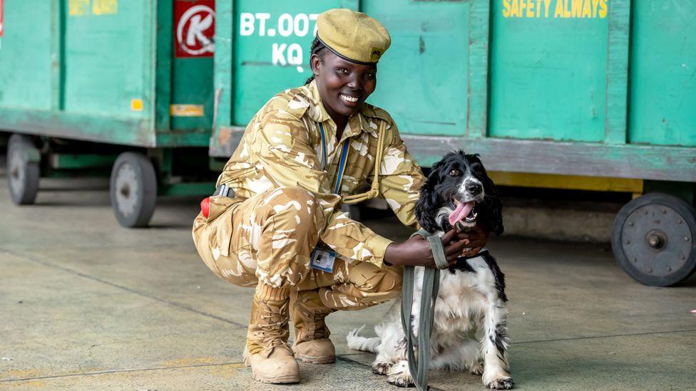 A uniformed dog handler with her springer spaniel at Jomo Kenyatta International Airport in Nairobi, Kenya