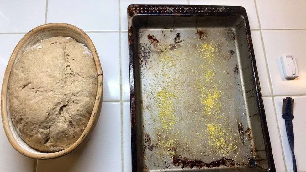 The ancient Egyptian yeasts being used to bake modern bread