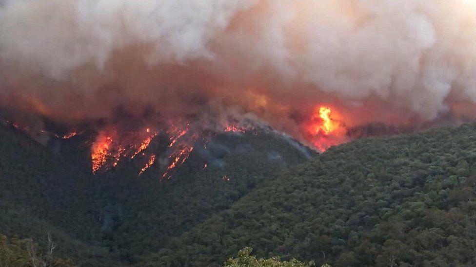 Димові потоки від пожежі в Східному Гіппсленді