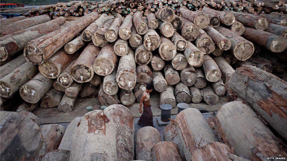 Workers walk past a log pile in Yangon, Myanmar (April 2014)