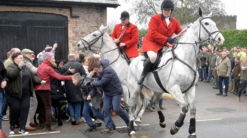 Horse collides with people