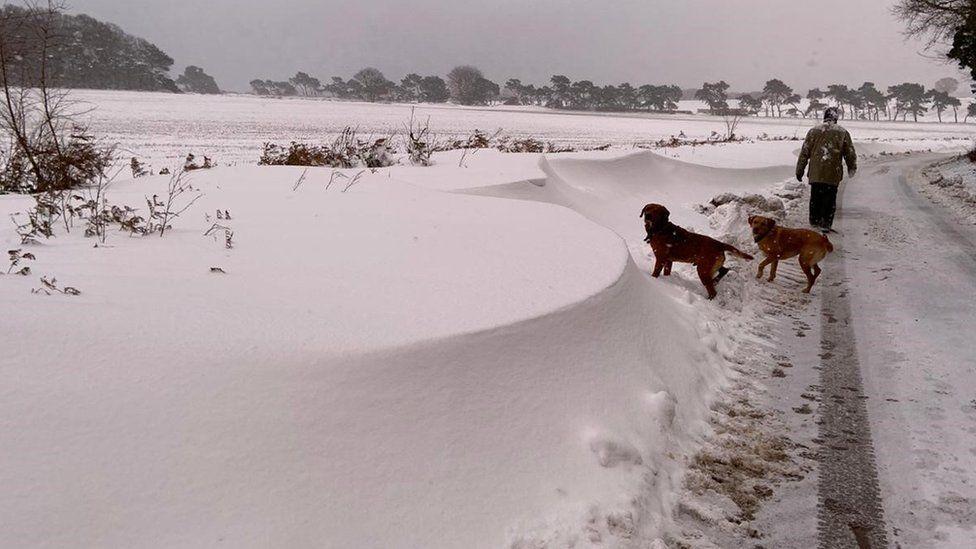 Snow in Ramsholt