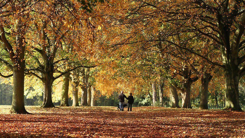 Abington Park, Northamptonshire