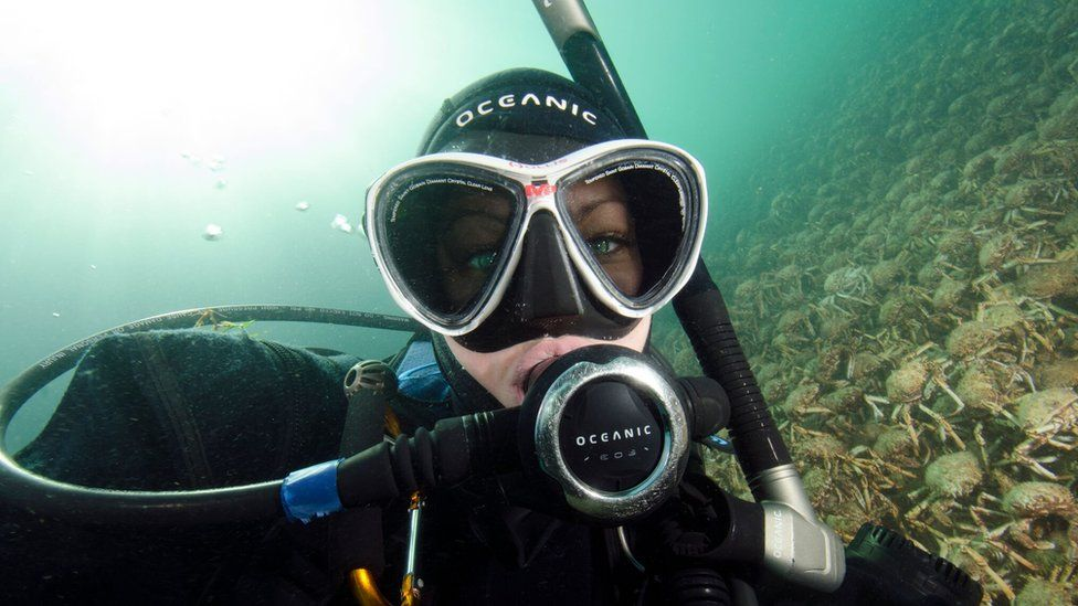 Sheree Marris takes a selfie with the spider crabs