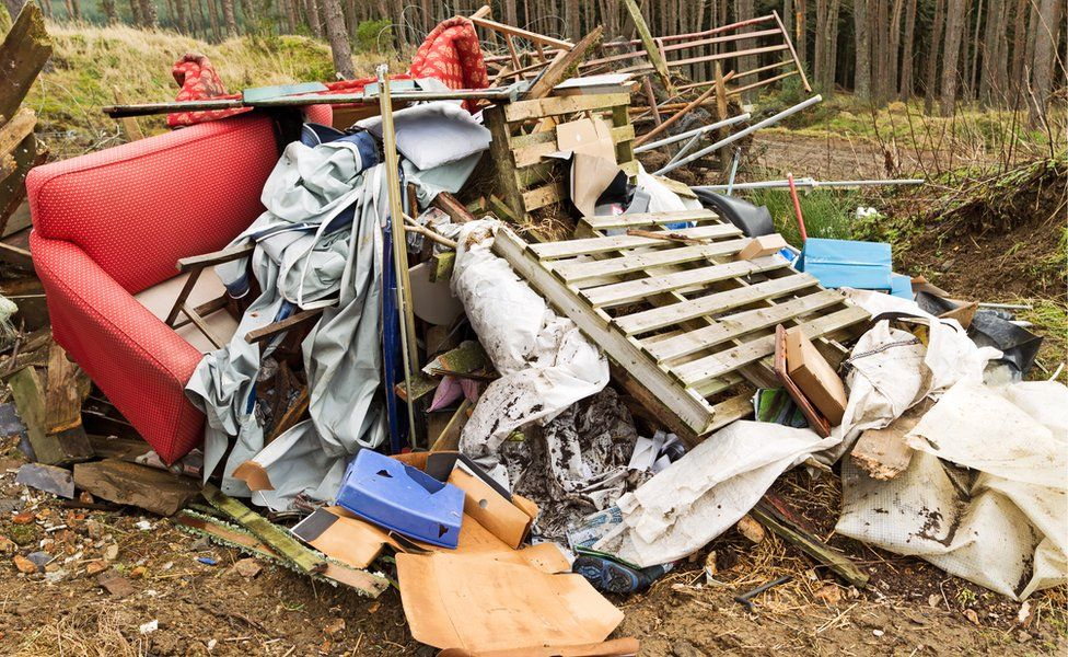 A pile of rubbish in a forest