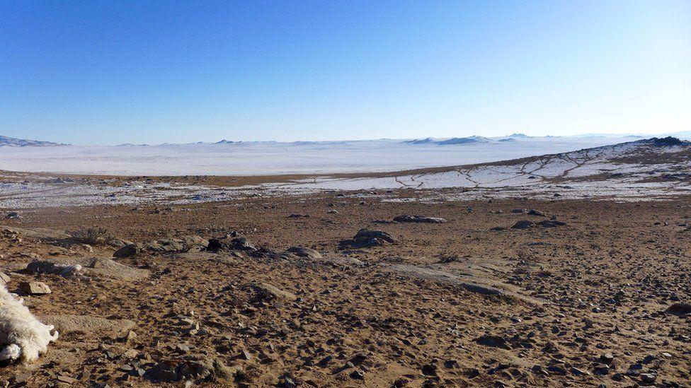 A snowy plain