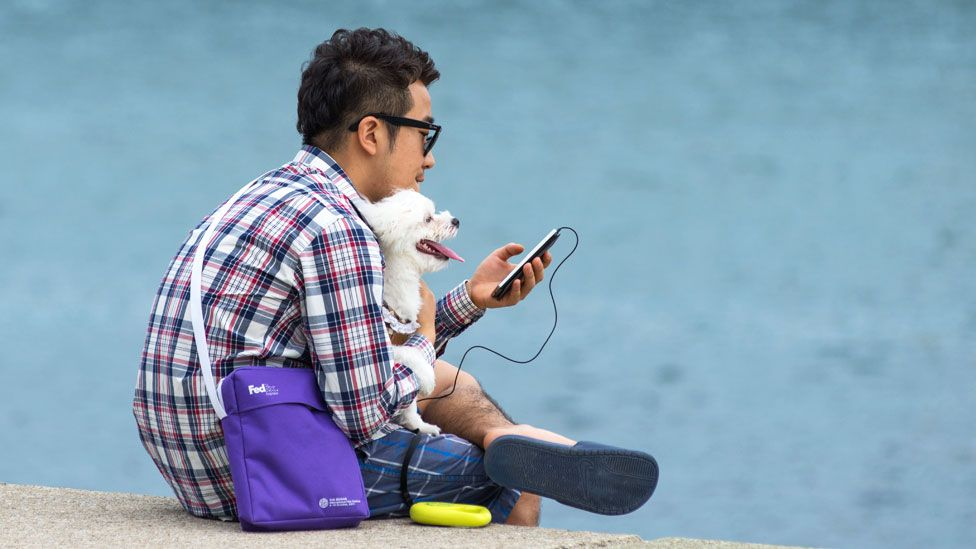 Man with dog, Pusan seafront
