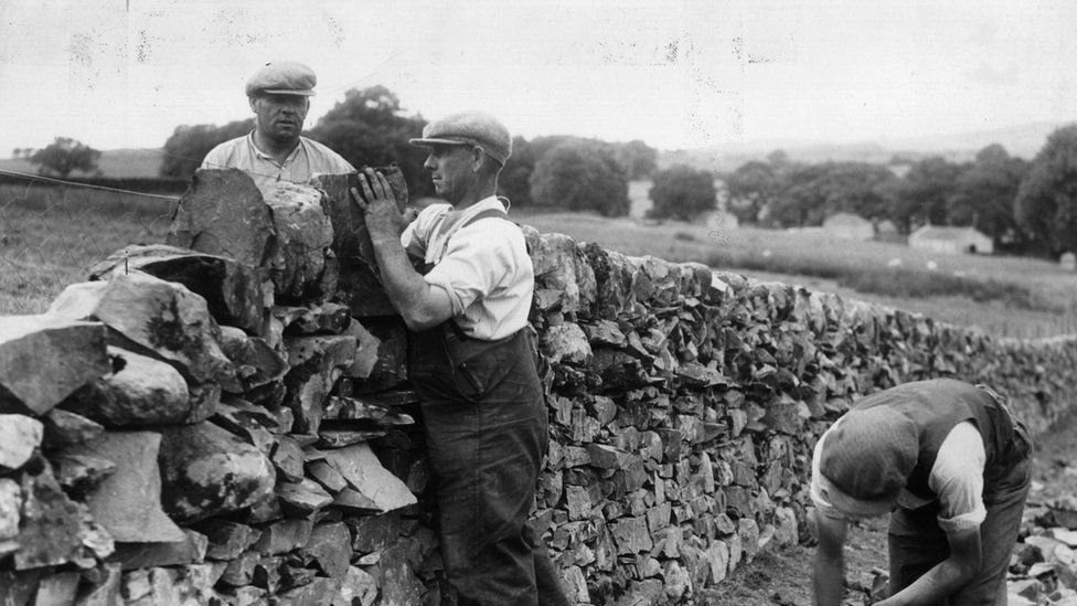 An image from 1936 shows men building a dry stone wall